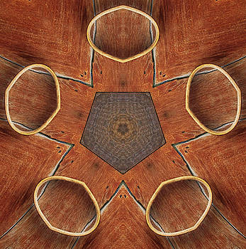 Barn Wood Kaleidoscope 2  by Peter J Sucy