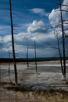 Roger Mullenhour - Barren Landscape