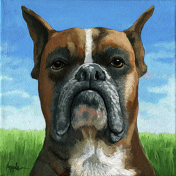 Barry Boxer by Linda Apple