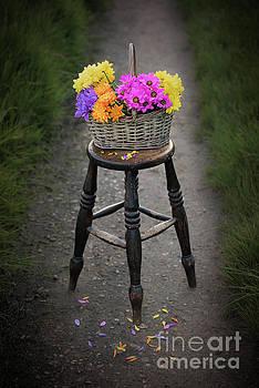 Svetlana Sewell - Basket of Flowers
