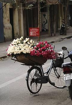 Basket Of Roses by Lee Stickels