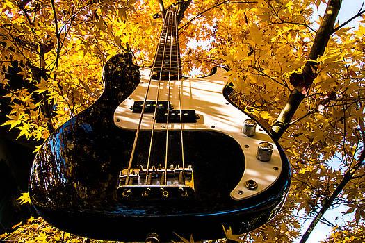 Mick Anderson - Bassic Autumn
