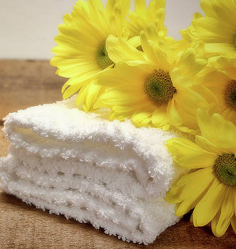 Bath Towels and Daisies by Vicki McLead