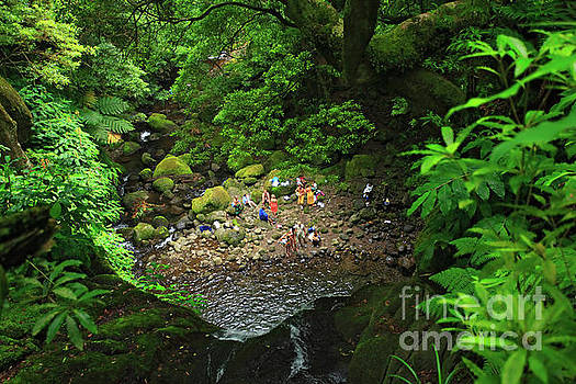 Gaspar Avila - Bathing in the forest