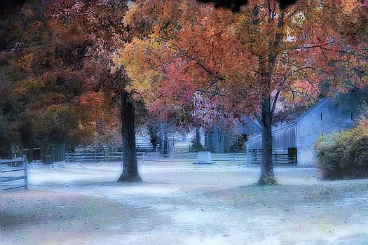 Batsto Village by John Rivera