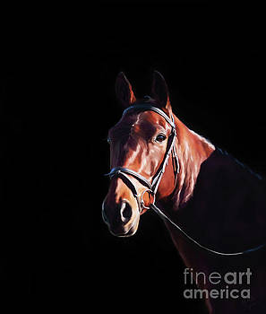 Michelle Wrighton - Bay on Black - Horse Art by Michelle Wrighton