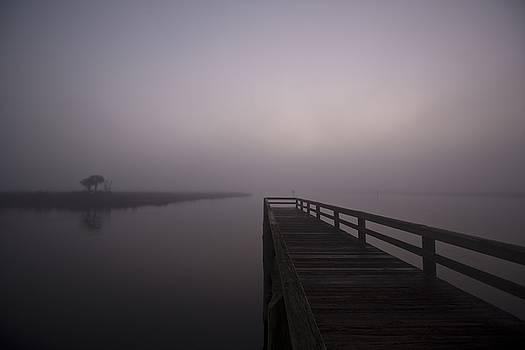 Bay Port Pier Foggy Morning by Regina Williams