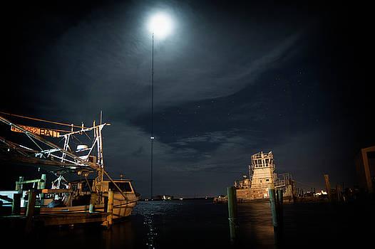 Bayou at night  by Alicia Morales