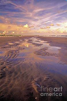 Beach at Sunset by Debbie Green