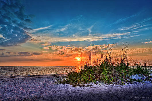 Beach Dune by Marvin Spates