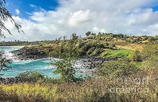 Beach Hike Kauai by William Wyckoff