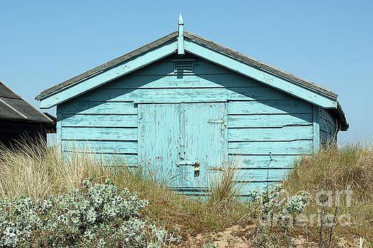 Beach hut sea holly and marram grass by John Edwards