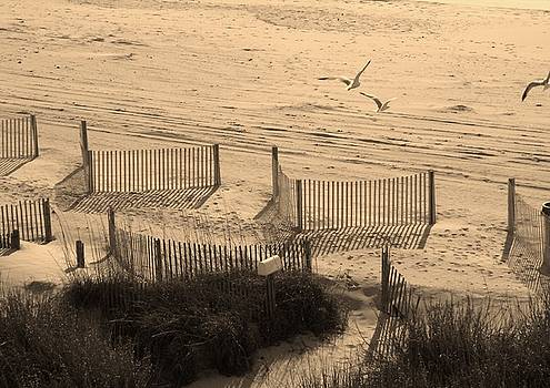 Beach in Sepia by Linda Bennett