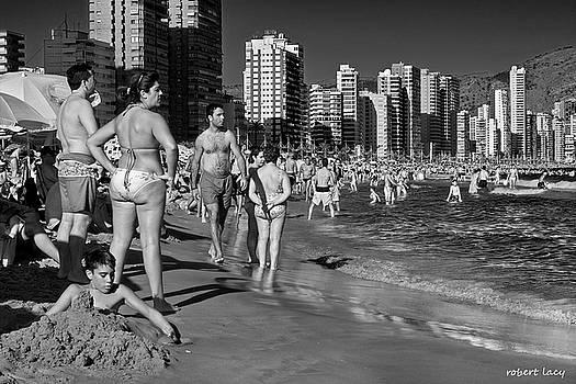 Robert Lacy - Beach Life