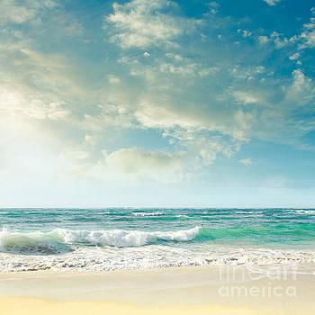 Beach Love Tropical Island Paradise by Sharon Mau
