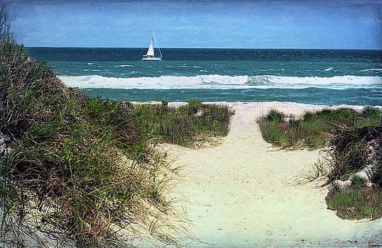 Beach Path Between The Dunes by Sandi OReilly