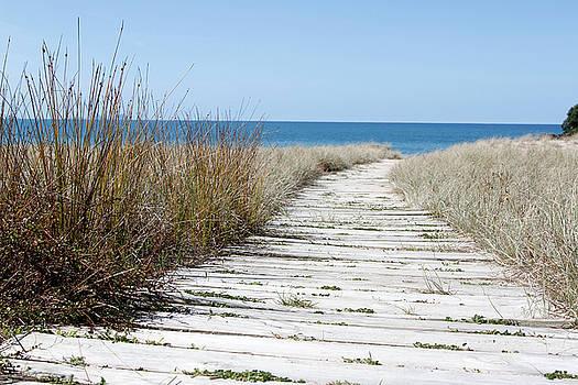 Beach path by Les Cunliffe
