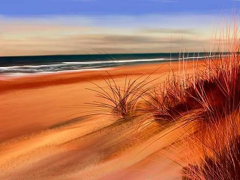 Beach sand dunes by Anthony Fishburne