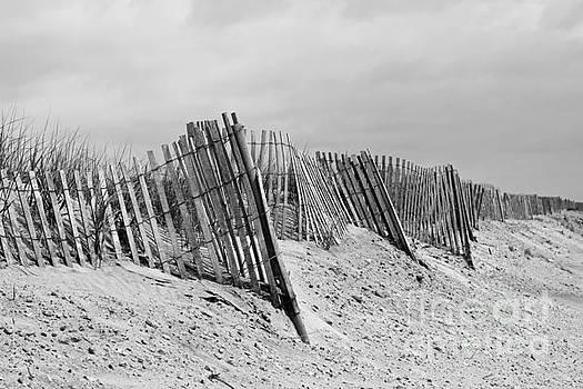 Beach Scene by Denise Pohl