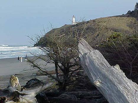 Beach  Study by Gregory Smith