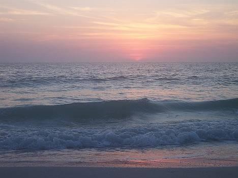 Beach Sunset 1 by Anna Villarreal Garbis