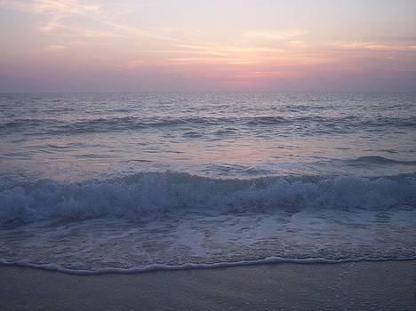 Beach Sunset 2 by Anna Villarreal Garbis