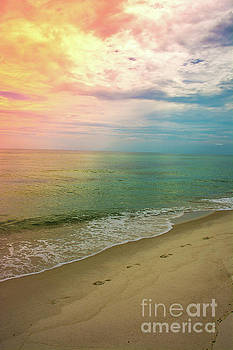 Beach Sunset by Janice Spivey