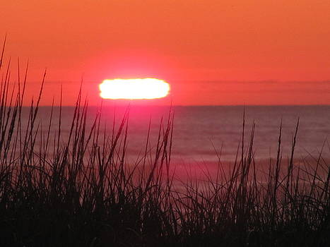 Beach Sunset on the Dunes by Gregory Smith