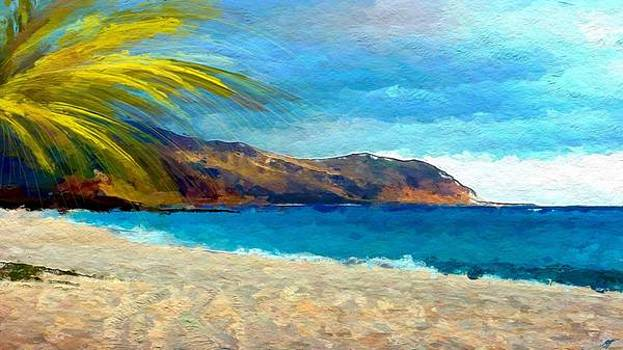 Beach View by Anthony Fishburne