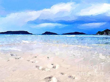 Beach walk by Anthony Fishburne