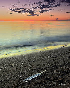 Beach Walk by Gregory Israelson