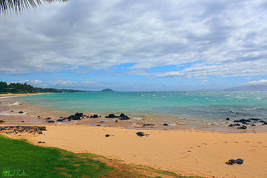 Beaches of Hawaii by Michael Rucker