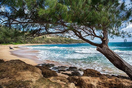 Beachin' It by Robert FERD Frank