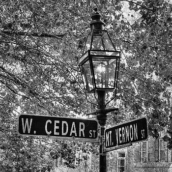 Beacon Hill Lamppost in Black and White by Joann Vitali