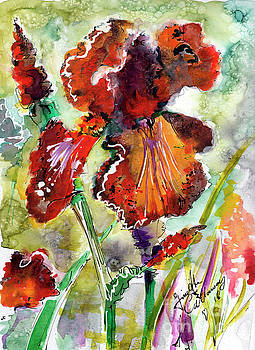 Ginette Callaway - Bearded Iris Brown Sally Watercolor