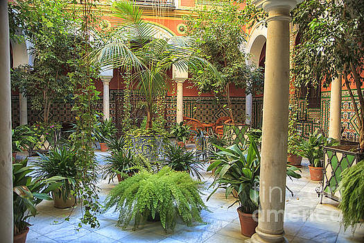 Patricia Hofmeester - Beautiful courtyard in Seville