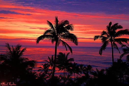 Beautiful Hawaiian Sunset by Michael Rucker