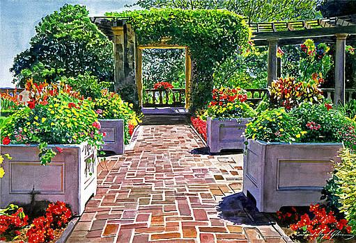 David Lloyd Glover - Beautiful Italian Gardens