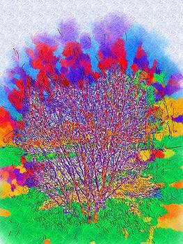 Beautiful Little Tree by Skyler Tipton