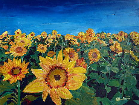 Beautiful Morning At Sunflower Fields by M Bleichner