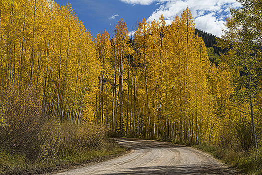 James BO  Insogna - Beautiful Rocky Mountain Back Road