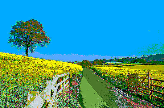 Beautiful Sunny Day by Charles Shoup