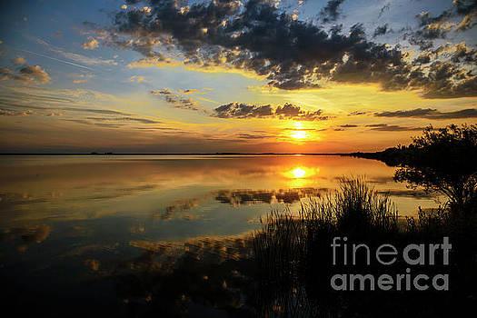 Beautiful sunset at the lake by Jelena Jovanovic