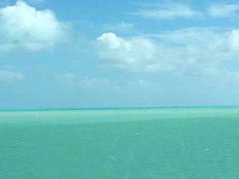 Beautiful Waters by Robin Regan