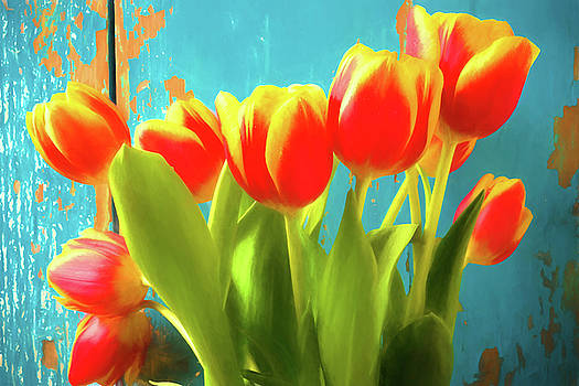 Beautiful Yellow Red Tulips by Garry Gay