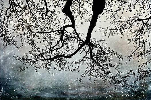 Beauty Above by Randi Grace Nilsberg