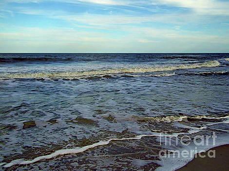 Beauty At The Beach by D Hackett