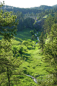 Beaver Creek in the Spring by Bill Gabbert