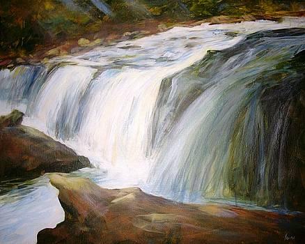 Beaver Falls  by Irene Pruitt