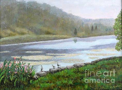 Beaver pond by Al Hunter